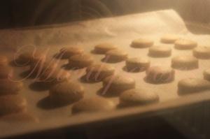 Macarons cu vanilie si crema de zmeura si afine