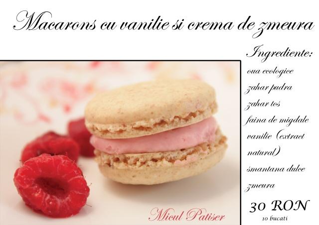 Macarons-zmeura