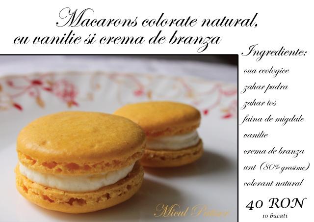 Macarons galbene colorate natural
