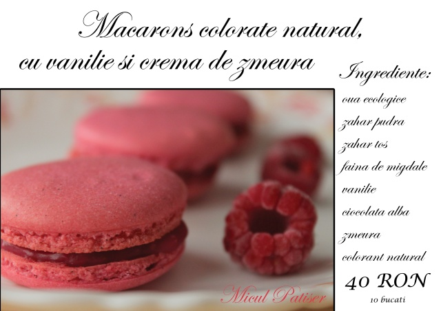 Macarons-colorate-zmeura