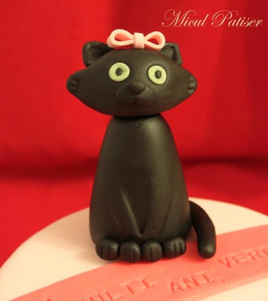 Tort cu pisica neagra pentru Vero