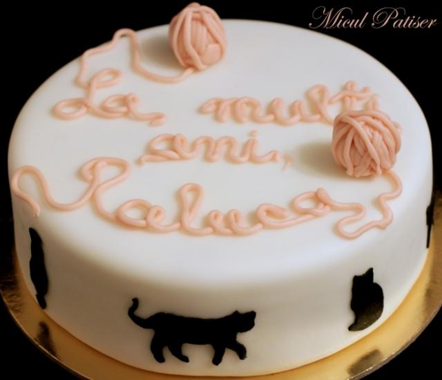 Tort pisici